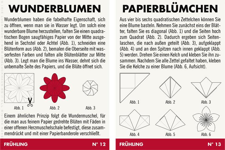 Infografik mit Anleitung zum Basteln von Wunderblumen, die sich im Wasser auffalten und Papierblümchen Blumen aus Papier für Lily Lux