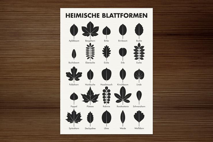 Postkarte mit der gezeichneten Infografik zur Bestimmung heimischer Blattformen und der Blätter von Bäumen