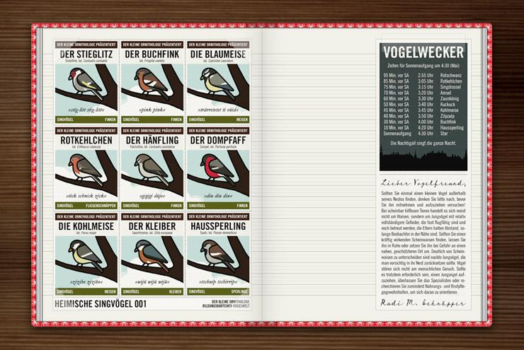 Infografik zur Bestimmung von Singvögeln mit Stieglitz, Buchfink, Blaumeise, Rotkehlchen, Hänfling, Dompfaff, Kohlmeise, Kleiber und Haussperling sowie ein kleiner Vogelwecker und eine Anleitung, was man tun soll, wenn man einen aus dem Nest gefallenen Jungvogel findet, im Lily Lux Notizbuch