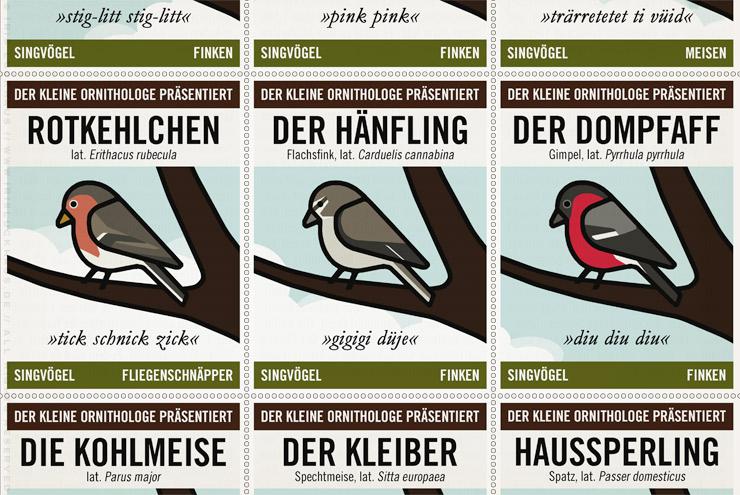 Ausschnitt aus Infografik zur Bestimmung von Singvögeln mit Stieglitz, Buchfink, Blaumeise, Rotkehlchen, Hänfling, Dompfaff, Kohlmeise, Kleiber und Haussperling vom Kleinen Ornithologen für Lily Lux