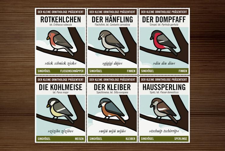 Infografik zur Bestimmung von Singvögeln vom Kleinen Ornithologen für Lily Lux mit Stieglitz, Buchfink, Blaumeise, Rotkehlchen, Hänfling, Dompfaff, Kohlmeise, Kleiber und Haussperling von Iris Luckhaus und Matthias Klesse