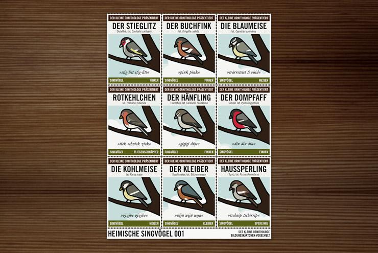 Postkarte mit Infografik zur Bestimmung von Singvögeln vom Kleinen Ornithologen für Lily Lux