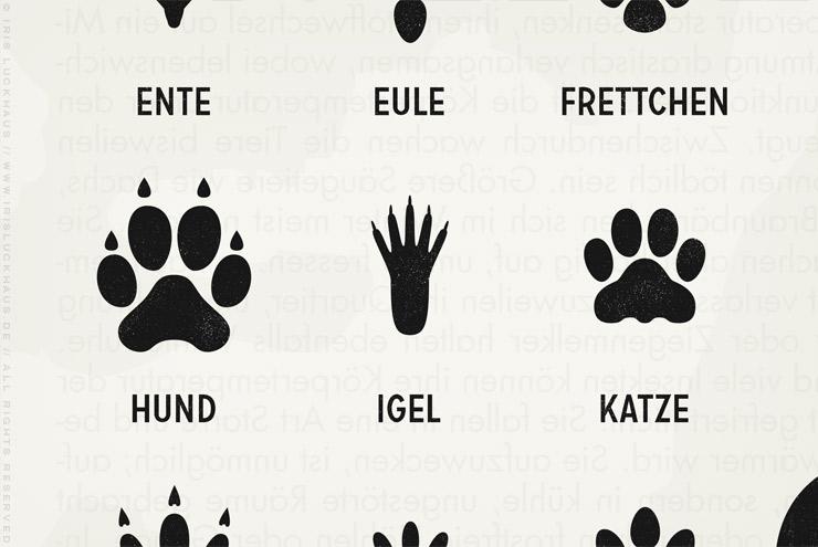 Makro von Infografik zur Bestimmung von Tierspuren, den Spuren heimischer Tiere