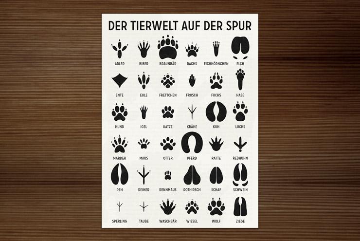 Postkarte der Infografik zur Bestimmung von Tierspuren, den Spuren heimischer Tiere