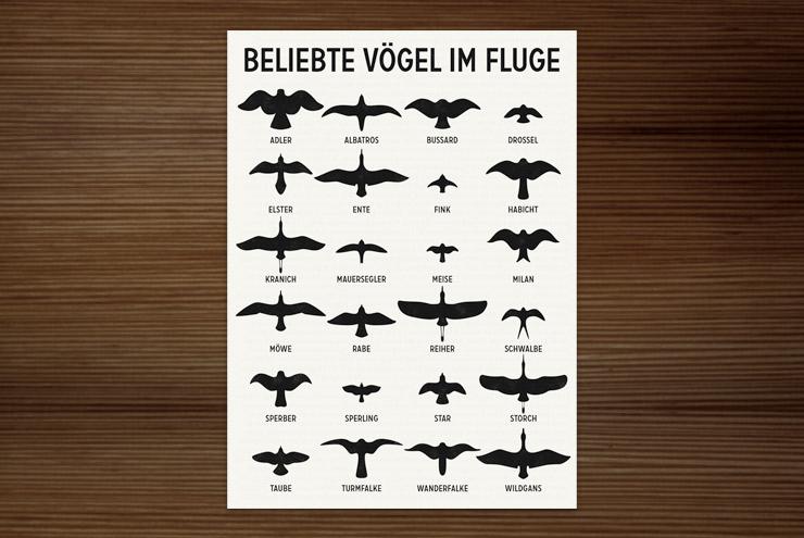 Postkarte mit Infografik zur Bestimmung heimischer Vögel im Fluge anhand ihrer Silhouetten