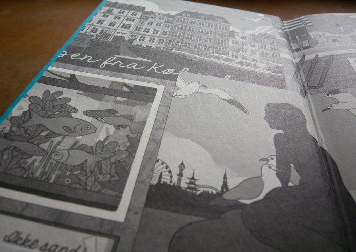 Fotos vom Vorsatzblatt im Lillesang Buch