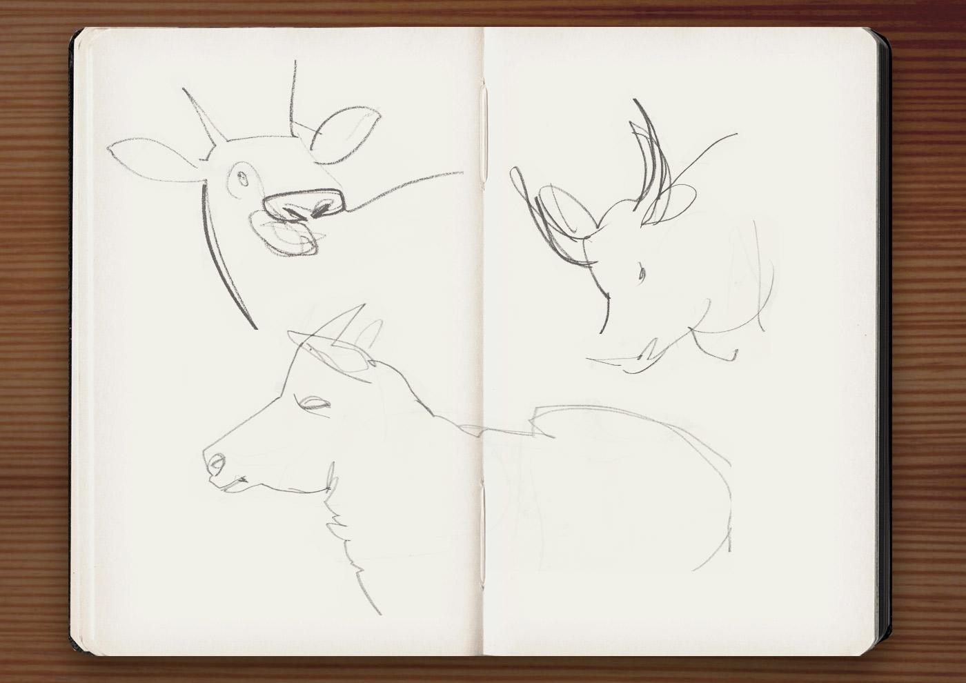Skizzen von Kühen in der Ménagerie, dem Zoo des Jardin des Plantes, in Paris