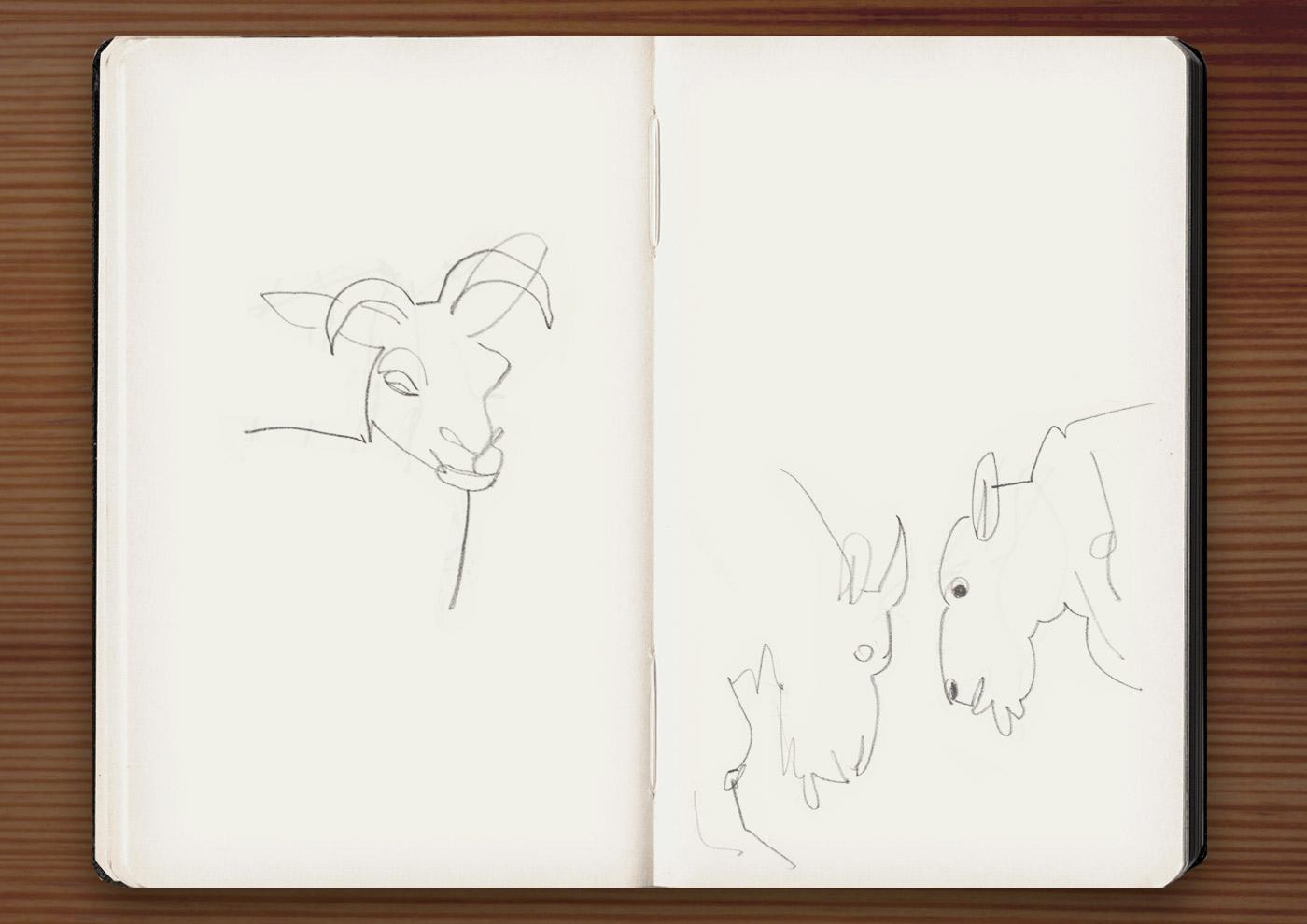 Skizzen von Schafen und Ziegen in der Ménagerie, dem Zoo des Jardin des Plantes, in Paris