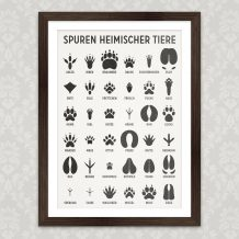 Art Print Common Animal Tracks