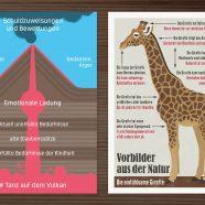 EmpaTrain | Details aus dem Empathie Labor
