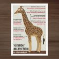 Postkarte zur Infografik Die einfühlsame Giraffe für EmpaTrain