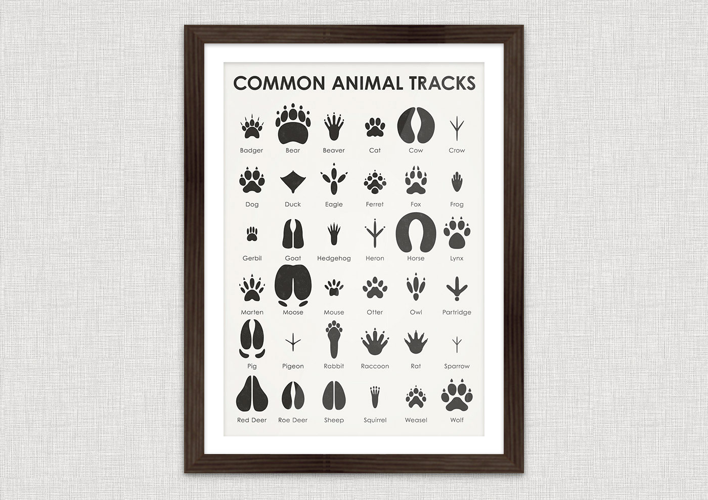 A practical sheet that makes it easy to identify the tracks of 36 common animals, such as badger, bear, beaver, cat, cow, crow, dog, duck, eagle, ferret, fox, frog, gerbil, goat, hedgehog, heron, horse, lynx, marten, moose, mouse, otter, owl, partridge, pig, pigeon, rabbit, raccoon, rat, sparrow, red deer, roe deer, sheep, squirrel, weasel and wolf.