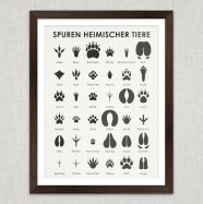 (Deutsch) Art Prints | Animal Tracks Wall Chart Poster