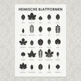 (Deutsch) Fresh Feature | Blattformen bei Shesmile