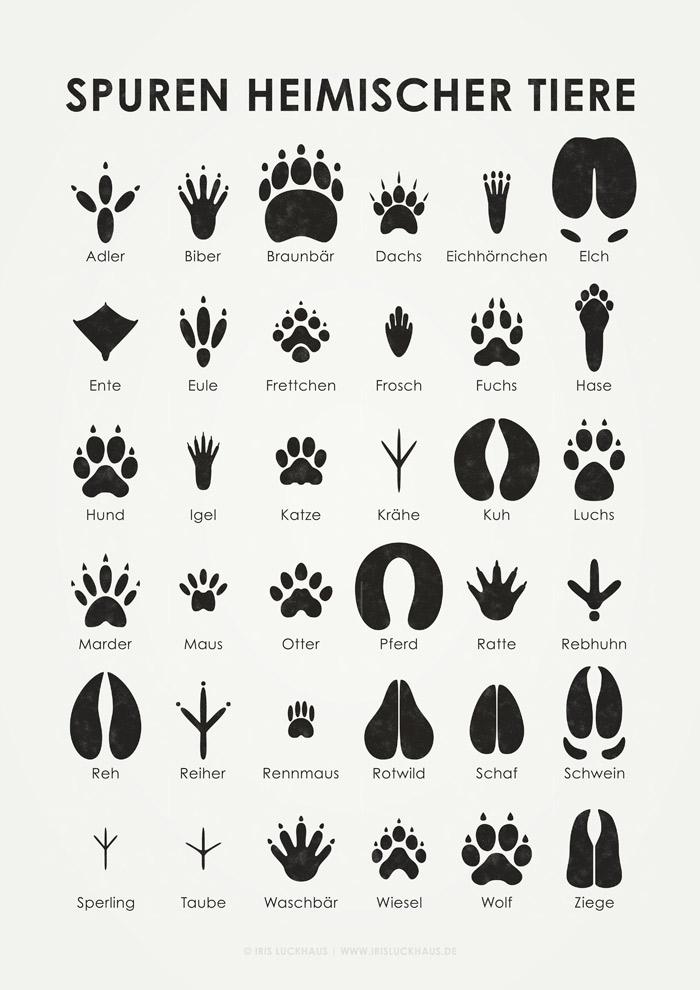 Tierspuren Poster von Iris Luckhaus