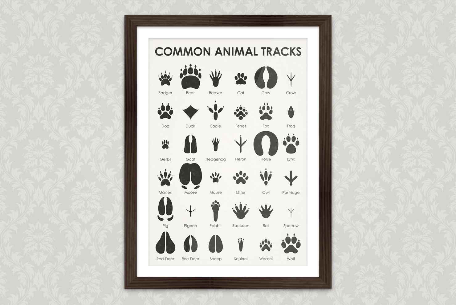Poster with an infographic as identification sheet for common animal tracks such as badger, bear, beaver, cat, cow, crow, dog, duck, eagle, ferret, fox, frog, gerbil, goat, hedgehog, heron, horse, lynx, marten, moose, mouse, otter, owl, partridge, pig, pigeon, rabbit, raccoon, rat, sparrow, red deer, roe deer, sheep, squirrel, weasel, wolf