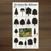 Published | Trees in Waldstück Magazine
