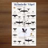 Published | Birds in Waldstück Magazine