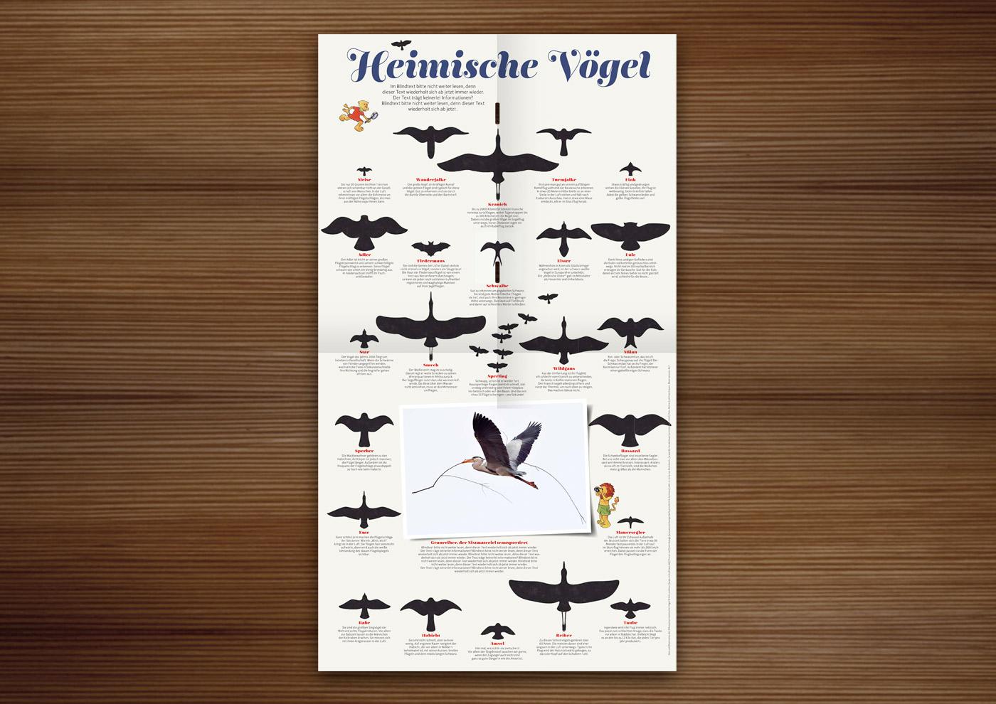 Vogelsilhouetten im Waldstück-Magazin der Niedersächsischen Landesforste