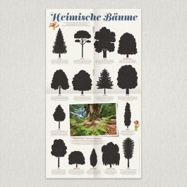"""Waldstück-Poster """"Heimische Bäume"""""""
