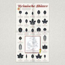 """Waldstück-Poster """"Heimische Blätter"""""""