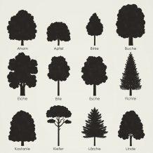 Heimische Baumformen