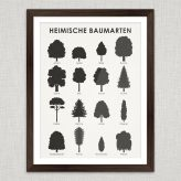 Art Prints | Identification Sheets with Tree Shapes