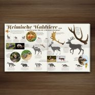 Published | Forest Animals in Waldstück Magazine