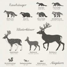 Heimische Waldtiere