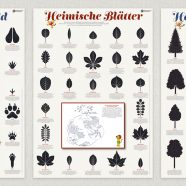 (Deutsch) Published | Learning Posters for Forest Education