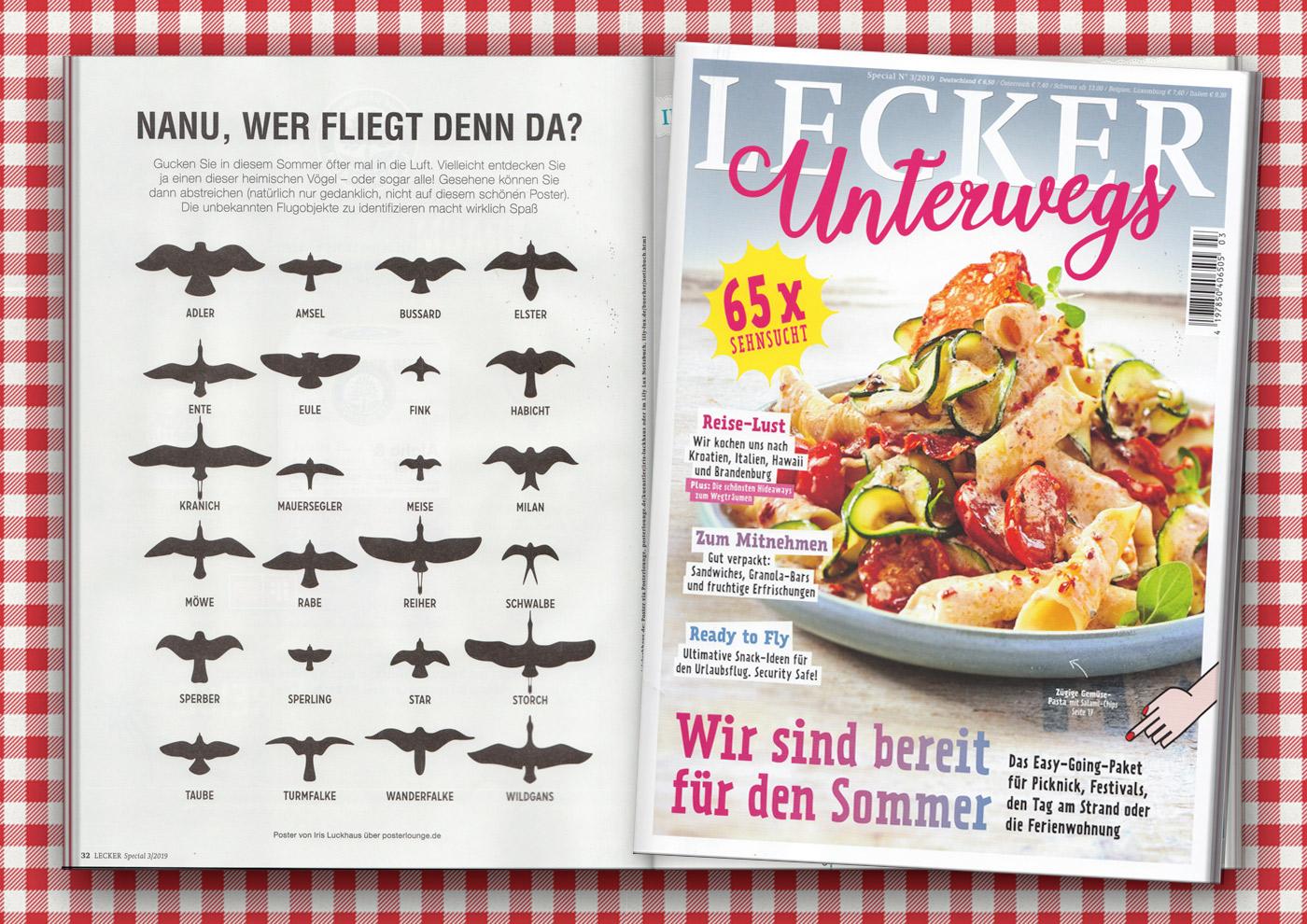 Vogelsilhouetten Vogelflug im Lecker Unterwegs Magazin
