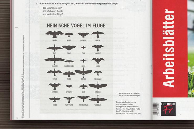 Heimische Vögel von Iris Luckhaus im Friedrich Verlag als Unterrichtsmaterial