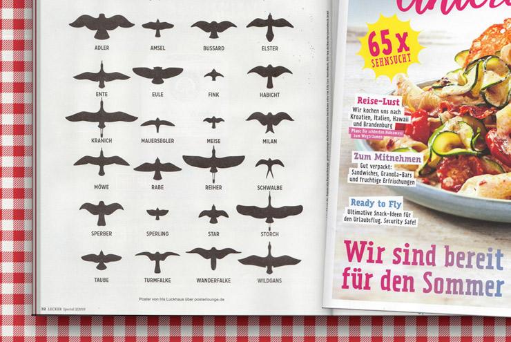 Heimische Vögel von Iris Luckhaus im Lecker Magazin