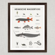 Art Prints | Identification Sheets with Water Animals