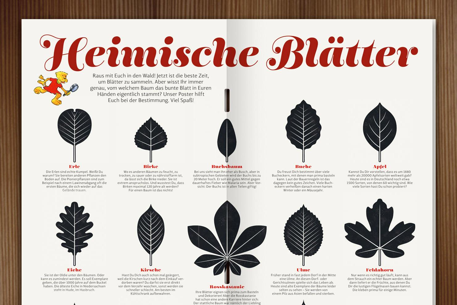 Blätter heimischer Bäume von Iris Luckhaus