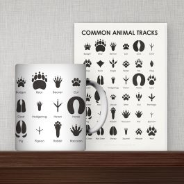 Animal Track Products