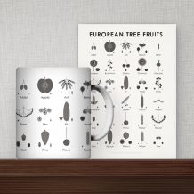 Tree Fruits Products