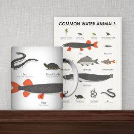Water Animal Products