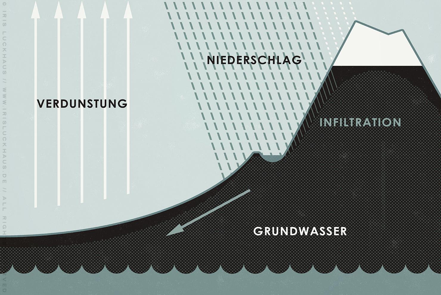 Ausschnitt aus einer Infografik zum Wasserkreislauf