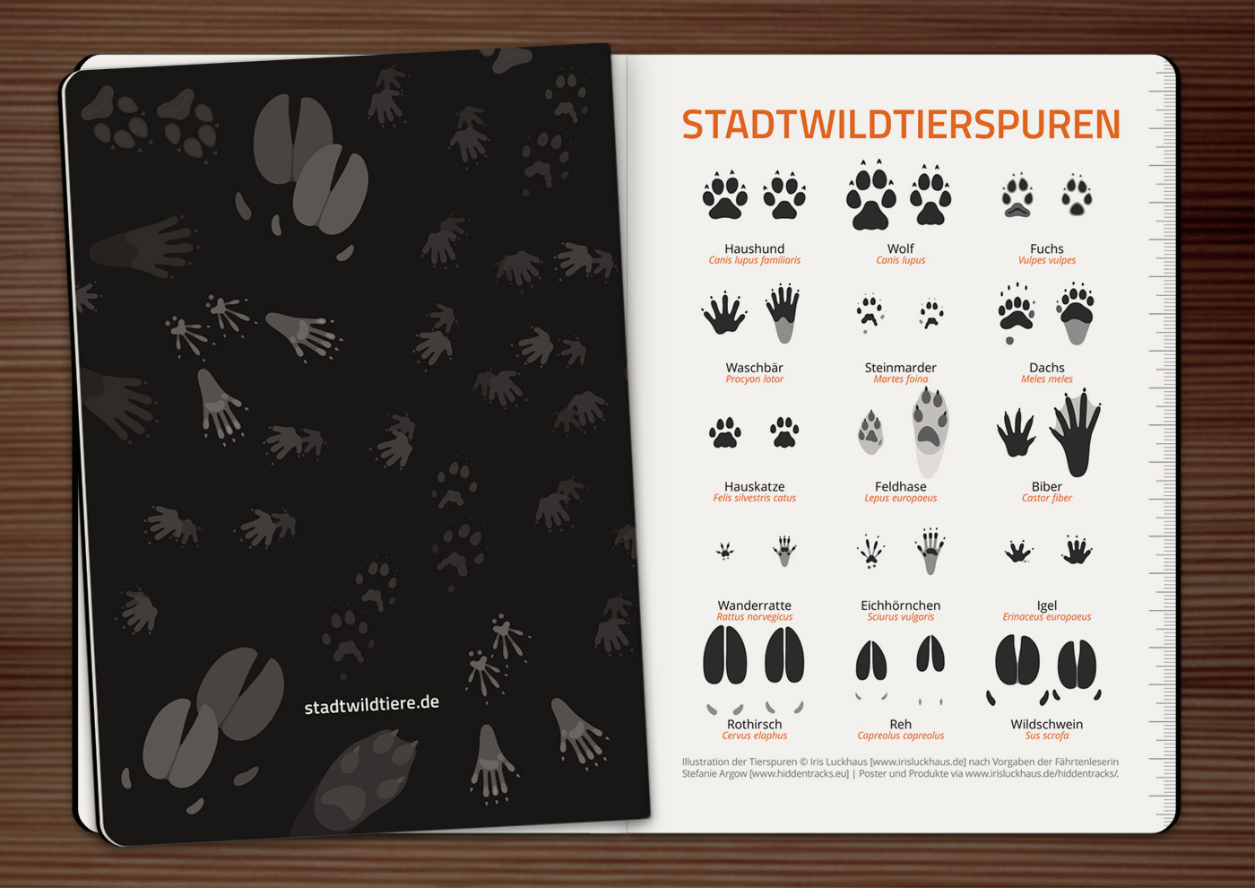 Notizheft mit einer Infografik bzw. Schautafel der Tierspuren bzw. Trittsiegel und Fährten von Hund, Wolf, Fuchs, Waschbär, Marder, Dachs, Katze, Hase, Biber, Ratte, Eichhörnchen, Igel, Rothirsch und Wildschwein von Iris Luckhaus und HiddenTracks für Stadtwildtiere
